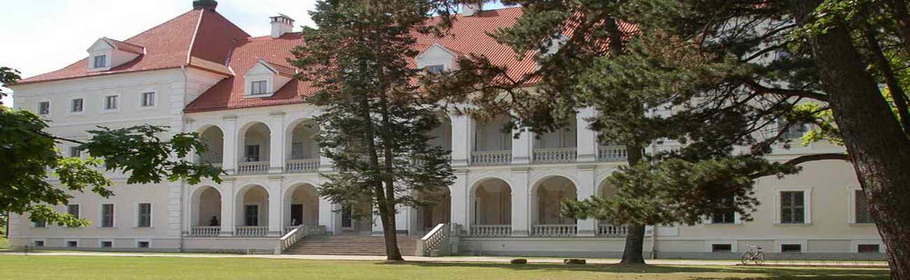 Birzai Schloss